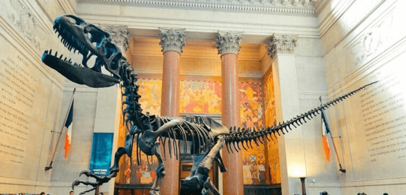 Top 3 des musées à visiter à New York