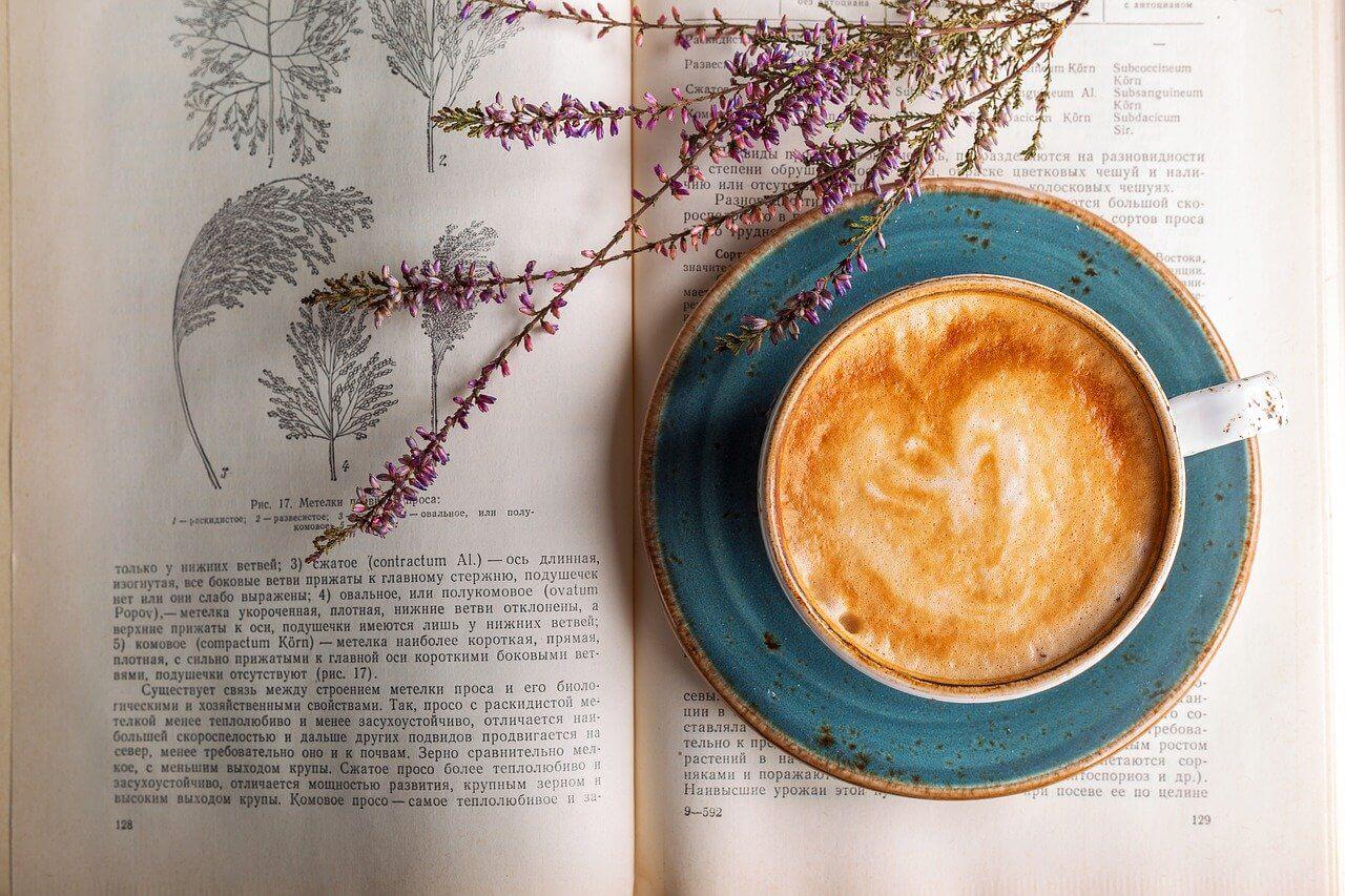 Faire le choix du café bio
